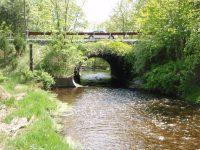 sm-bridge-insp